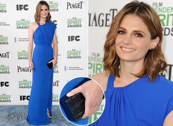 Stana Katic in Yigal Azrouël | 2014 Film Independent Spirit Awards