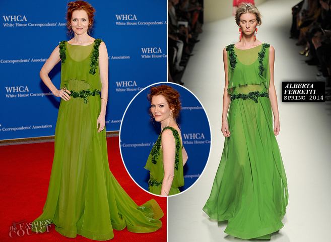 Darby Stanchfield in Alberta Ferretti | 2014 White House Correspondents' Dinner