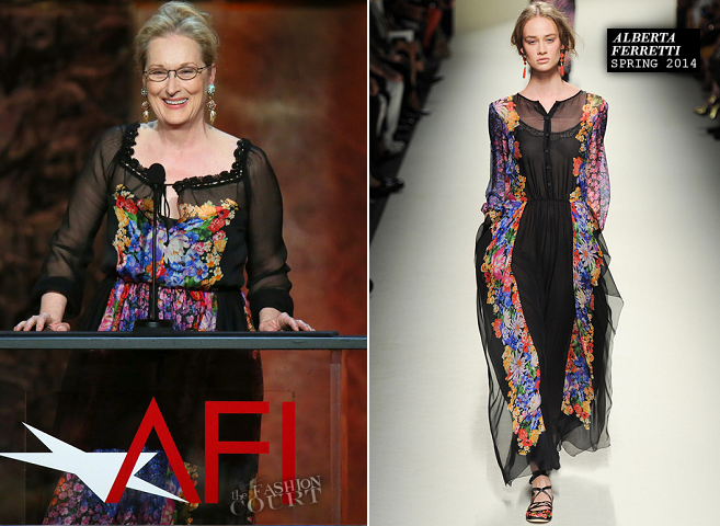 Meryl Streep in Alberta Ferretti | 2014 AFI Life Achievement Award: A Tribute to Jane Fonda